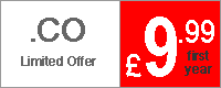 .co domains on special offer